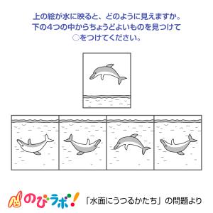 やってみよう「水面にうつるかたち」の問題9