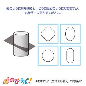 やってみよう「切り口の形(立体図形編)」の問題9