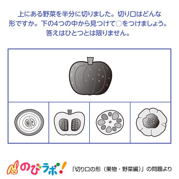 やってみよう「切り口の形(果物・野菜編)」の問題9