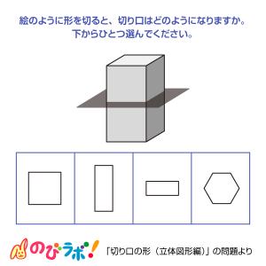 やってみよう「切り口の形(立体図形編)」の問題8