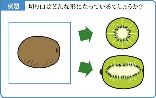 切り口の形-図1