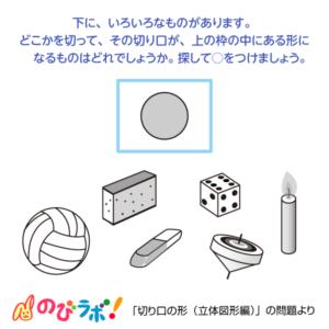 やってみよう「切り口の形(立体図形編)」の問題12