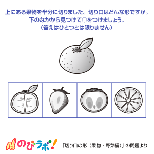 やってみよう「切り口の形(果物・野菜編)」の問題6