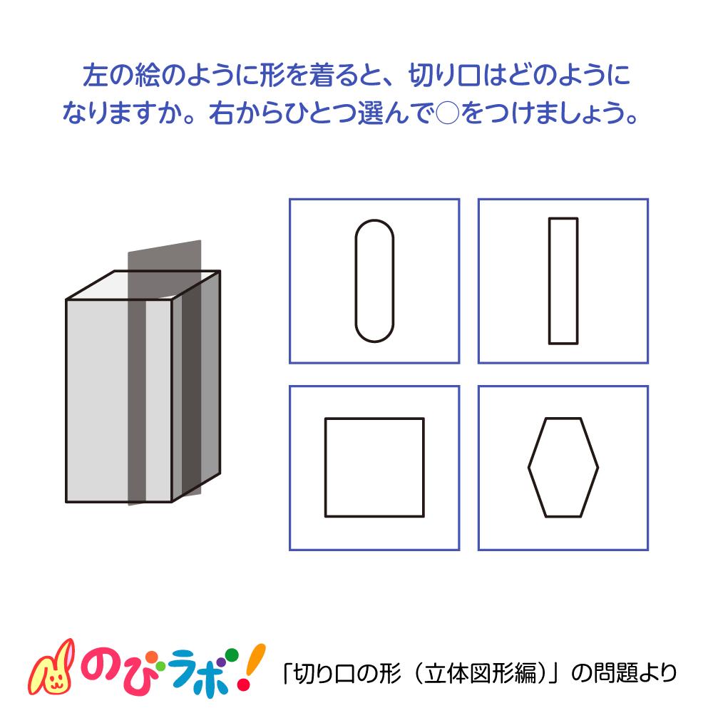 やってみよう「切り口の形(立体図形編)」の問題13