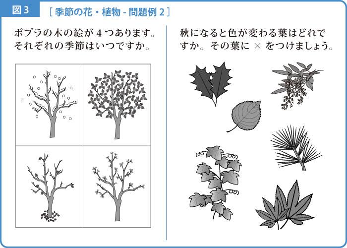 季節-解説図-3