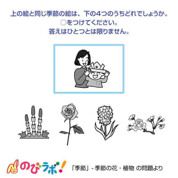 やってみよう「季節の花・植物」の問題7